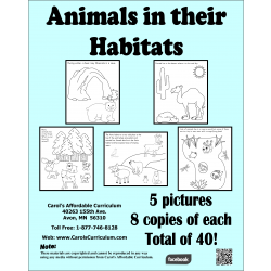 Animals in their Habitats